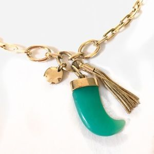 ✨ Graziano Cn ✨ Turquoise Horn Pendant Necklace